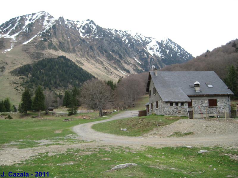 Le plateau du Lienz au printemps