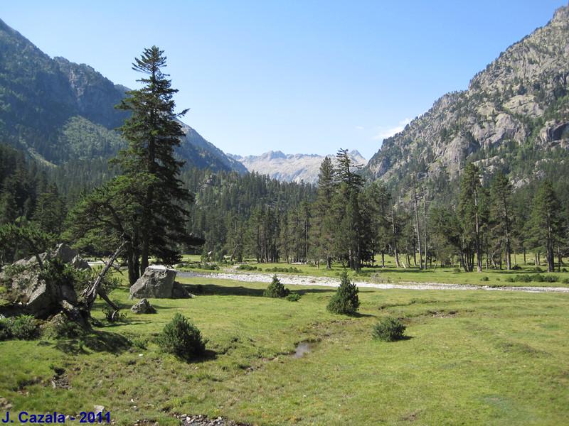 Le plateau du Marcadau en été