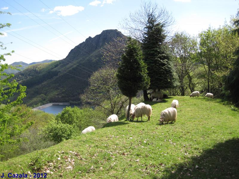 Vue typique sur les Pyrénées Basque