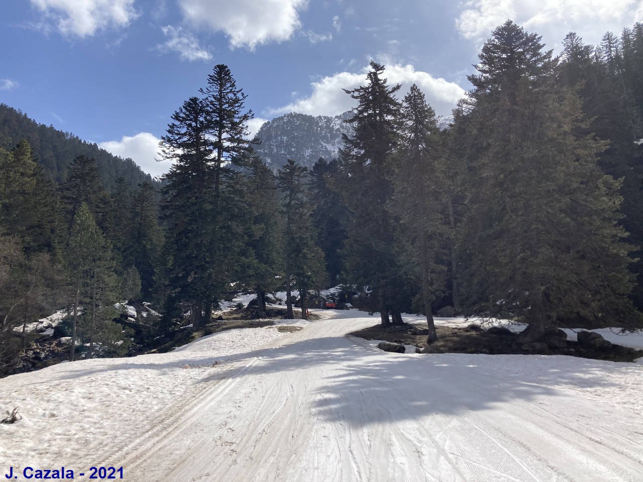Ski de fond au plateau du Cayan