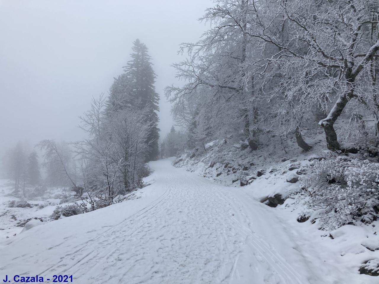 Paysage hivernal au plateau du Cayan
